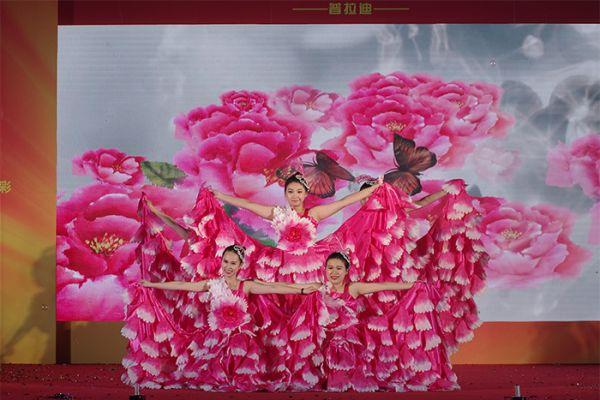 2017年春节晚会